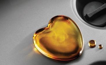Al elegir aceite (también) nos fiamos del taller