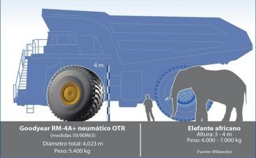 Un neumático como un elefante, así es la cubierta más grande de Goodyear