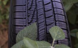 ¿Aceite de soja en los neumáticos? Sí, y es muy útil